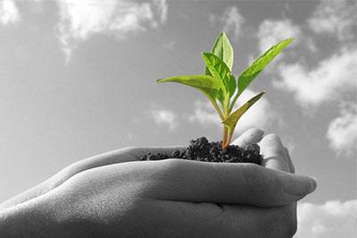 نظام إدارة الحسابات والتحقق من غازات الدفيئة ISO 14064