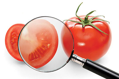 نظام ISO 22000 لإدارة سلامة الأغذية